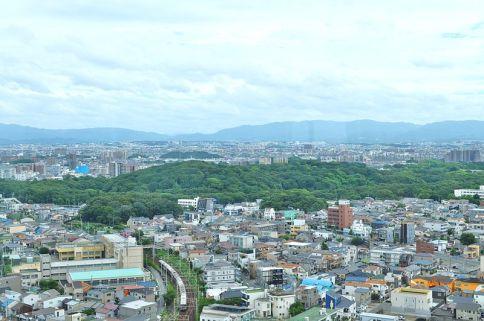 Daisenryo_Kofun_zenkei